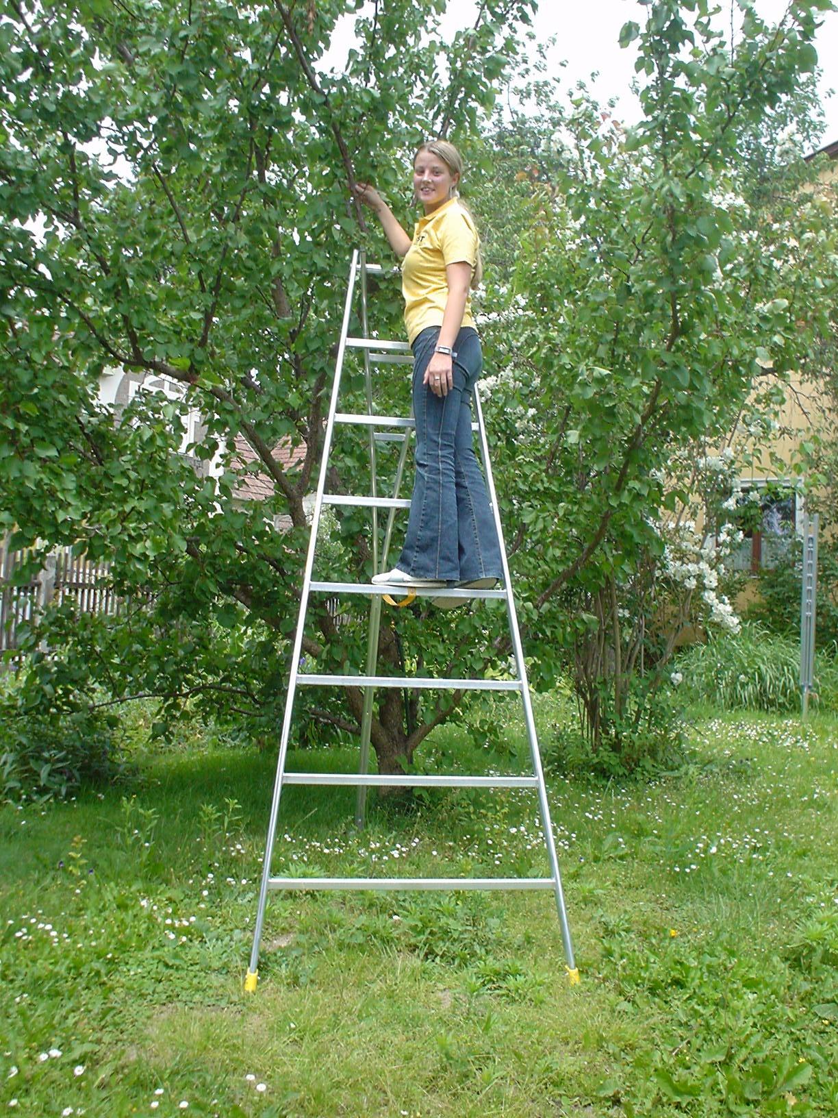 Rebrík na zber ovocia 59-3